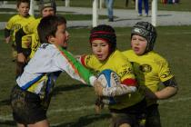 tournoi-arudi2013-036.jpg